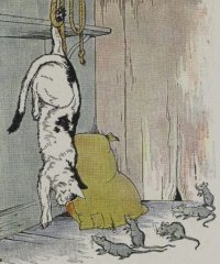 The-Cat-and-the-Old-Rat